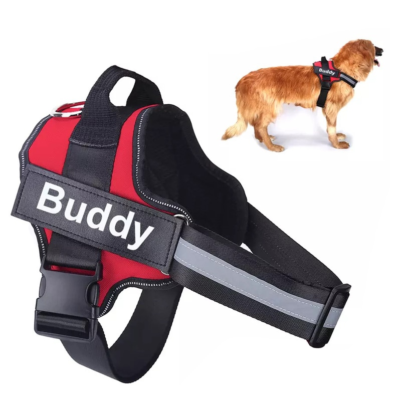 Personalized Cat Dog Leash Harness Reflective Breathable Adjustable Pet for Small Large Vest Custom Stickers