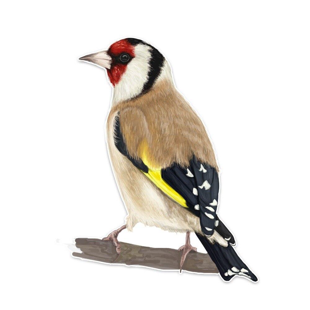 JOGAR LEGAL Etiqueta Do Carro Dos Desenhos Animados Bonito Criativo Aves Decoração Acessórios de moda Personalizado À Prova D Água Decalques de PVC Reflexivo, 14cm * 10cm