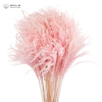 free shipping 20pcs natural light pink wedding pampas bunch valentines day gift dried flowers pampas grass bouquets