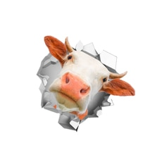 Personality Car Sticker 3D Cow Vinyl Waterproof Car Window High Quality Accessories Decorative PVC 1