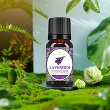 10ML Water Soluble Aromatherapy Essential Oil Natural Plant Aroma Essential Oil For Humidifier Aroma