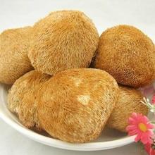 100% Hericium organique naturel, champignon de crinière de Lion, nourriture saine de chine