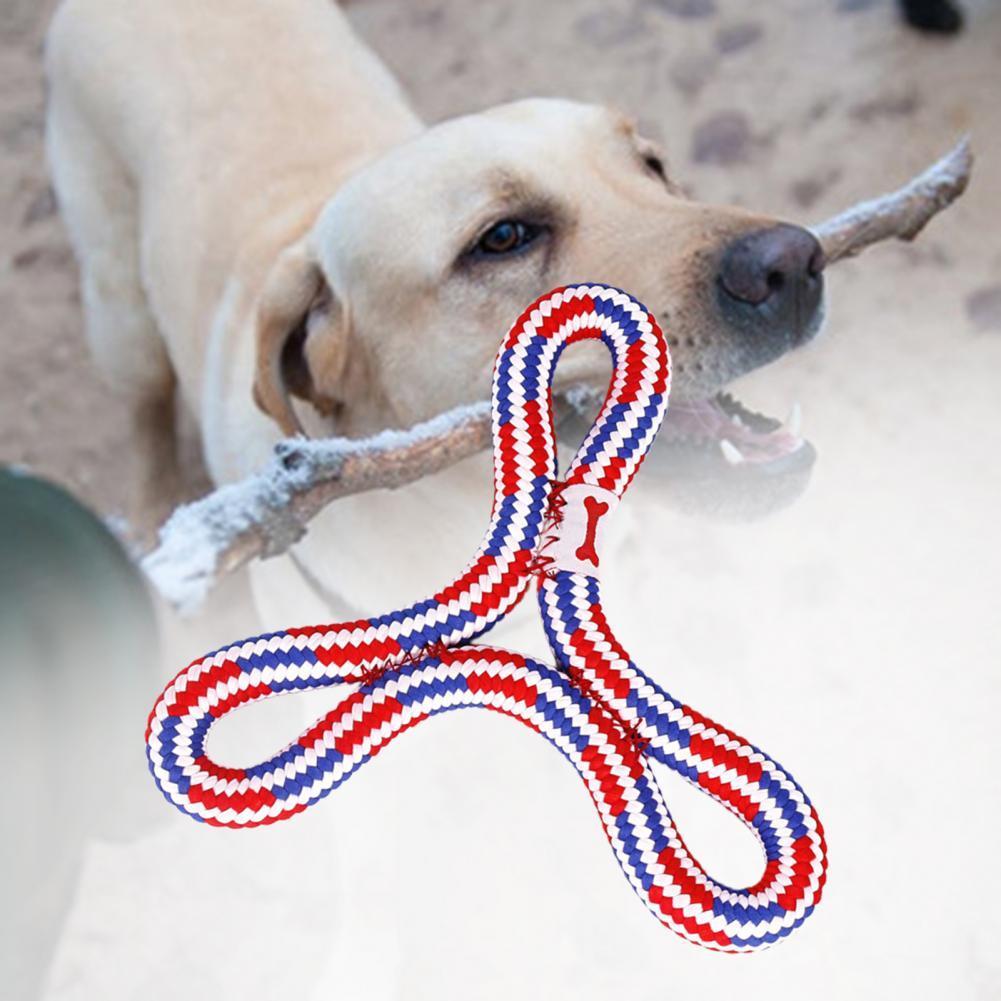 Juguete de cachorro, divertido y exquisito, educativo, trenzado, Frisbee, para mascota, 70%