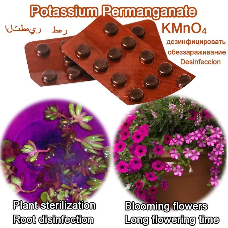 24 Pieces Potassium Permanganate Plant Rooting Seed Sterilization KMnO4 Bonsai Disinfection