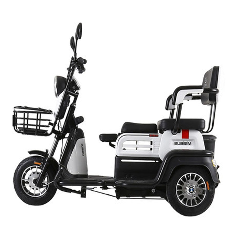 Family Electric Scooter