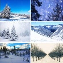 Vinyl Custom Photography Backdrops Prop  Winter landscape  Theme Photography Background 200309HD-05