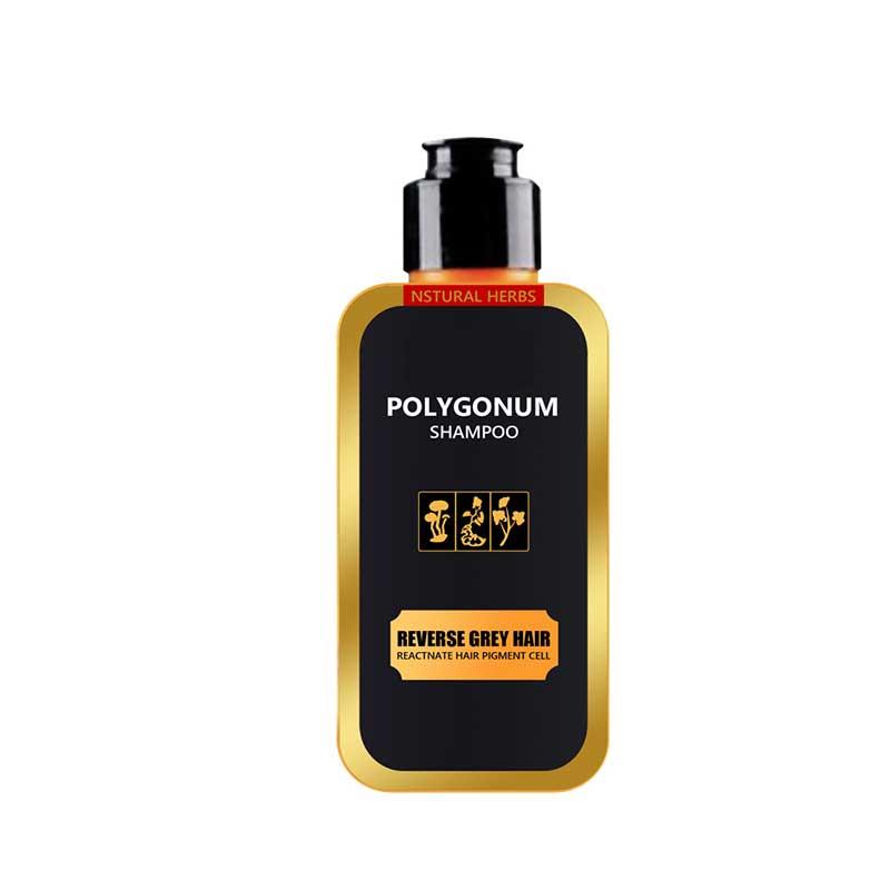 Natürliche Polygonum Multiflorum Shampoo Schwarz Haarpflege Shampoo Haar Verdunkelung Shampoo 200ML