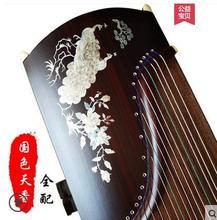 Chinese guzheng  musical instrument Paulownia elongata Zither