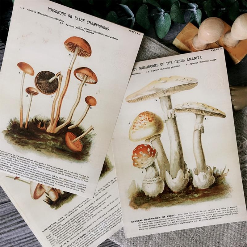 A5 European and American distressed mushroom plant illustration material paper DIY scrapbook album happy plan decorative paper