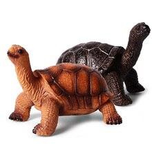 Tortue animaux modèle figurine Simulation animaux sauvages figurines Collection PVC beau jouet enfants cadeau