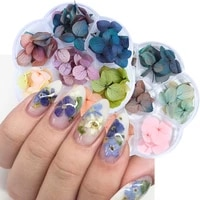 dried flowers dry plants nail art decorations pressed flowers for manicure decor small daisy rose nail accessories lot gl1524