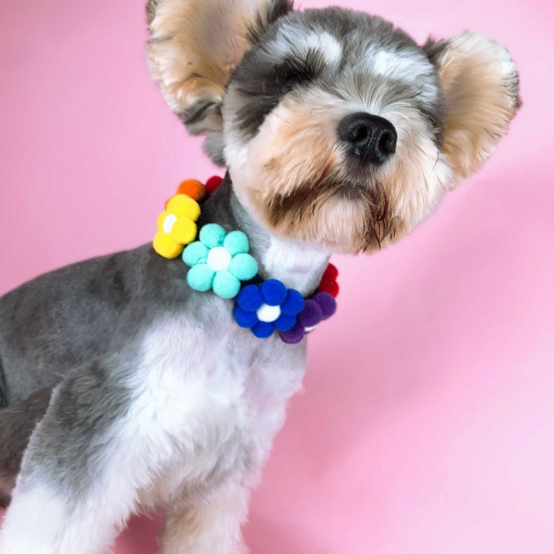 Colar do gato do animal de estimação coleiras decoração personalizada flor colar para filhote de cachorro gatinho trela acessórios bulldog chihuahua