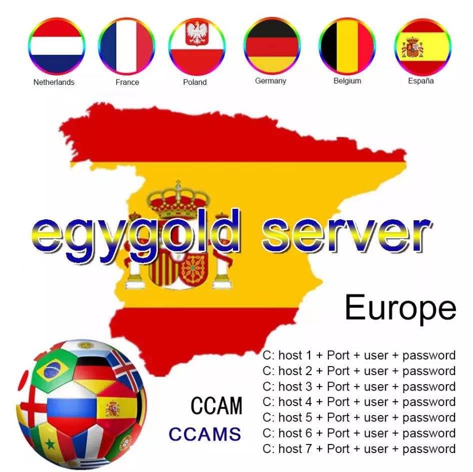 Egygold CCAM TV Receiver AV Cable line in europe cline egygold 7 lines Freesat ccam cline for DVB-S2