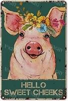 Citation drole de salle de bain en metal  signe en etain  decor mural Vintage bonjour joues douces cochon avec fleurs  signe en etain pour salle de bain