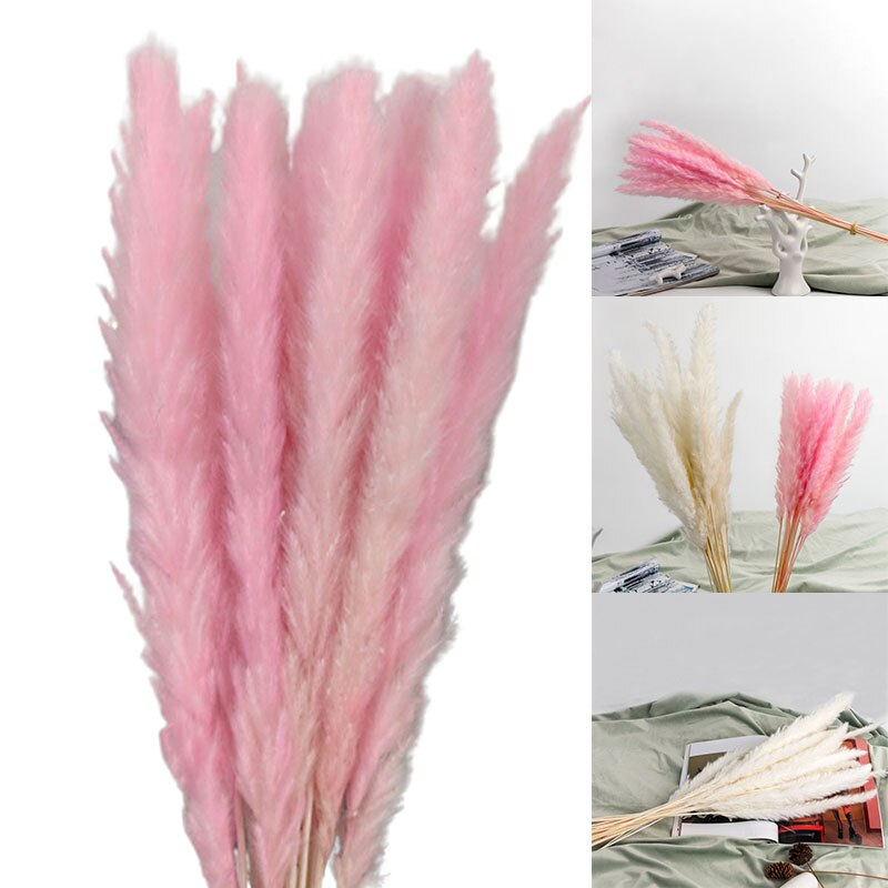 15PCS Natural Dried Pampas Grass Reed Flower Bunch Wedding Bouquet Decors Home Living Room Decoration PRE Dried Flowers