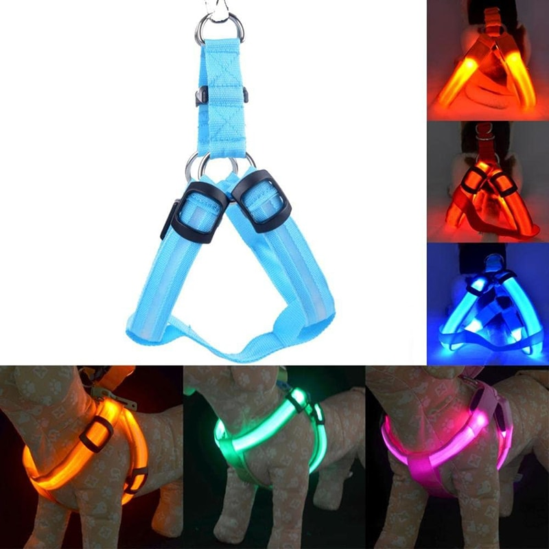 LED Nylon Pet Hund Katze Harness Led Blinklicht Harness Kragen Pet Sicherheit Led Leine Seil Gürtel Hund Zubehör