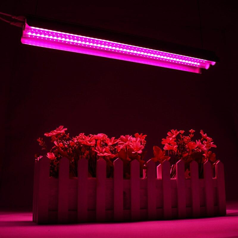 LED Grow luces 500W lámpara de cultivo de espectro completo 50cm tubo doble para invernadero hidropónico planta de interior plántulas US/UE enchufe