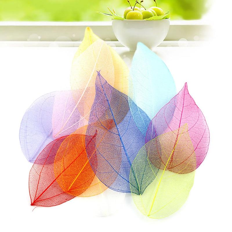 AliExpress - 20Pcs Multicolor Natural Skeleton Leaves Pressed Flower Scrapbooking Decoration DIY Handmade Materials Wedding Party Decor