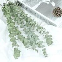 Feuilles deucalyptus naturelles 10 pieces  ornement de fleurs sechees pour bricolage  accessoires de decoration pour tournage de mariage a domicile  fournitures pour Plan de Branches