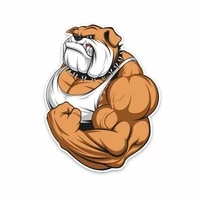 personality bulldog full color bodybuilder car stickers accessories motorcycle cover scratches waterproof pvc 14cm 10cm