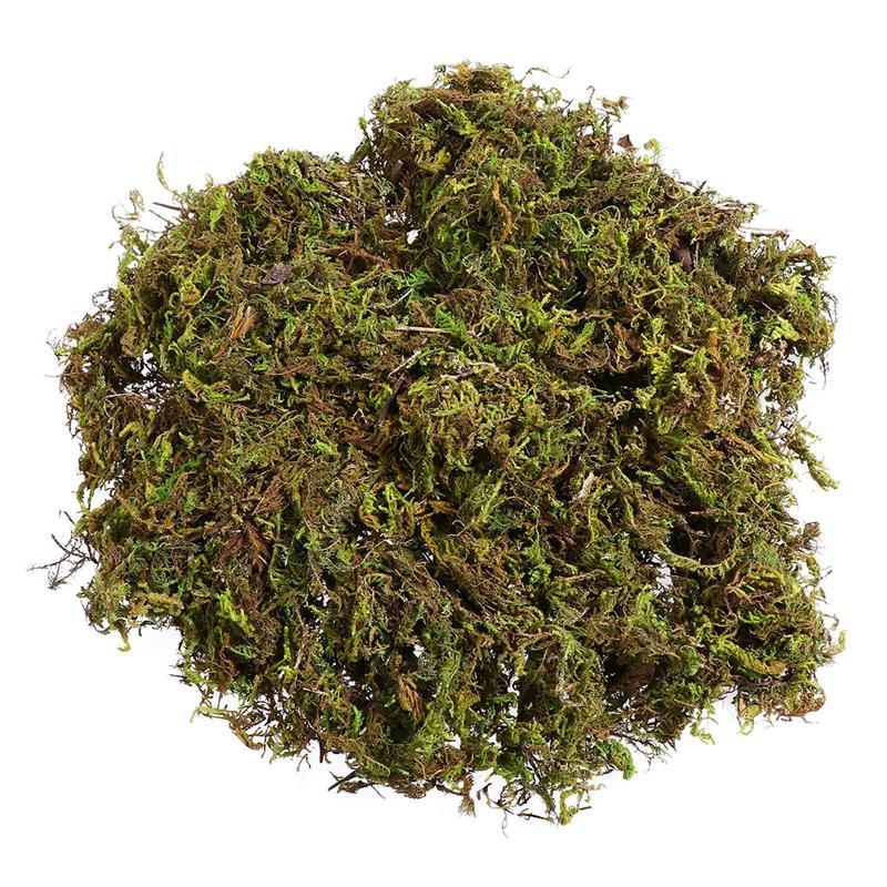 3 paquetes de musgo Artificial Lichen simulación de plantas verdes falsas para la decoración del Patio del jardín del hogar (1 paquete para 60g)