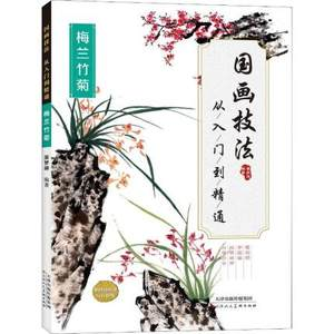 Basic introduction to Chinese ink painting Plum blossom bamboo chrysanthemum flower painting drawing art book for Adults