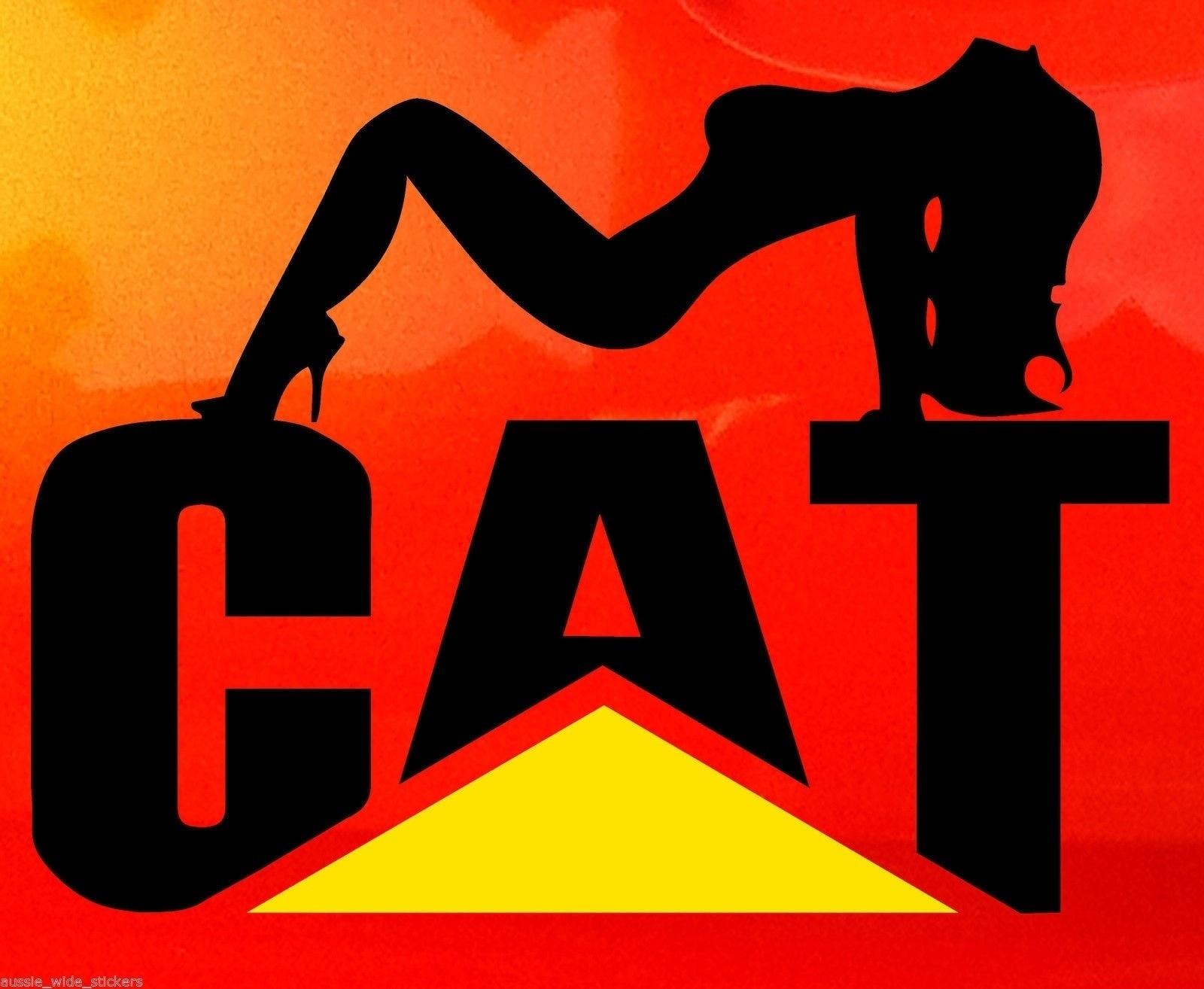Pegatina de pollito de gato grande de 30x23cm, pegatina de vinilo de corte Ute de oruga