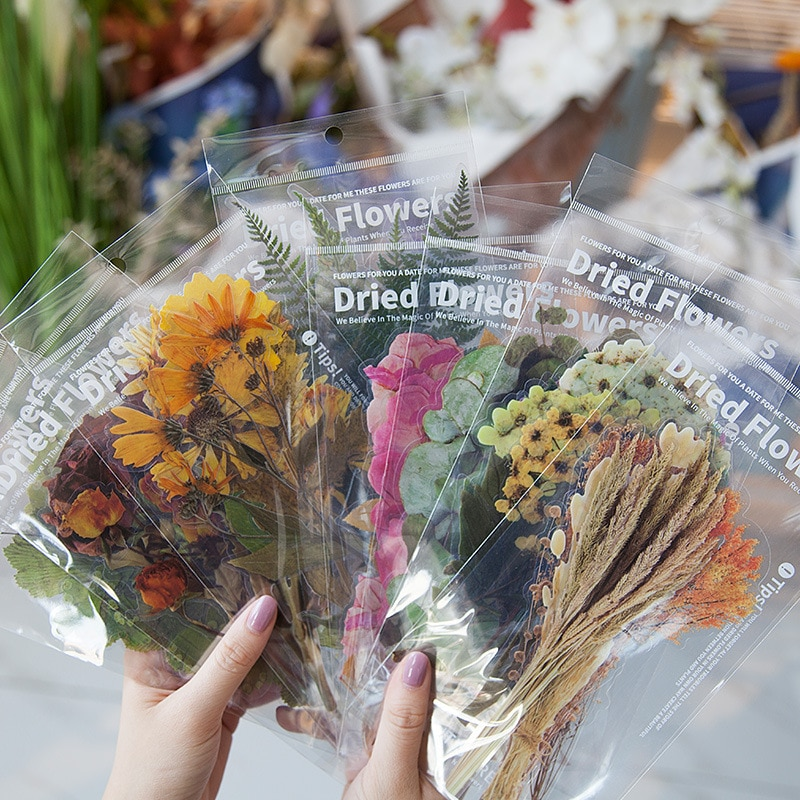8 Packs Total 48PCS/LOT Big Size Dry Flowers Plants Theme PVC Stickers DIY Journaling Stationery Free Shipping