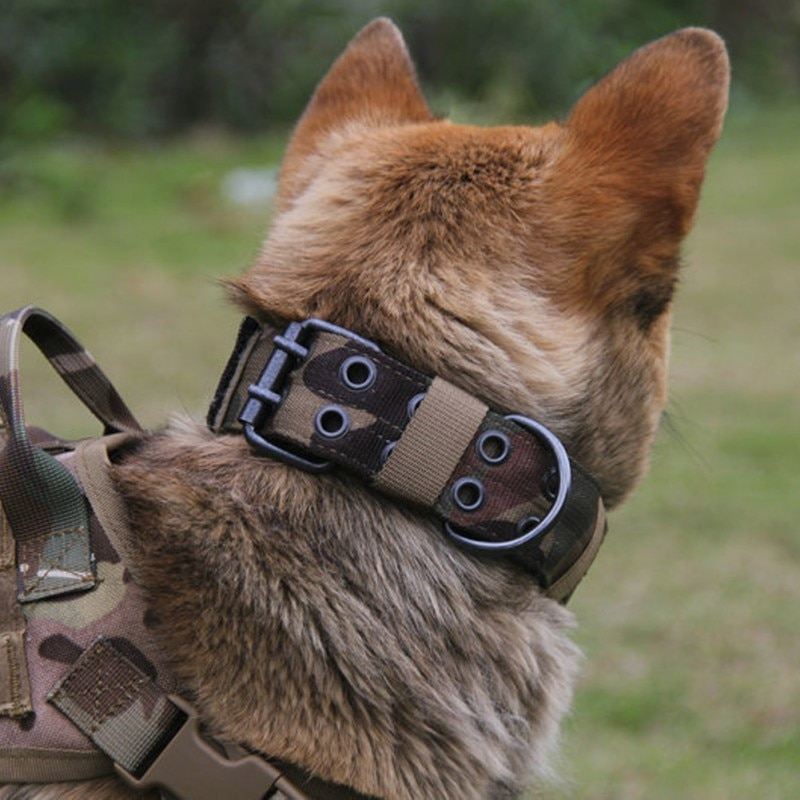 Width Durable Tactical Nylon Dog Collar Outdoor Adjustable Training Collar Pet Military Collar Dog Police Pet Products  DF01