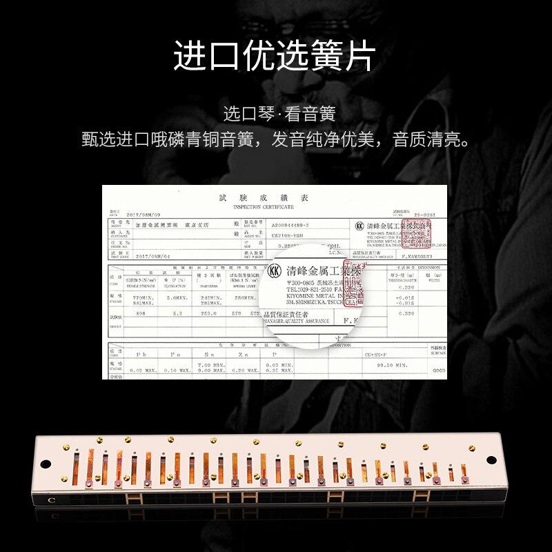 Harmonica 24-Hole Accented Polyphonic C Key Beginner Student Men Advanced Adult Beginner enlarge