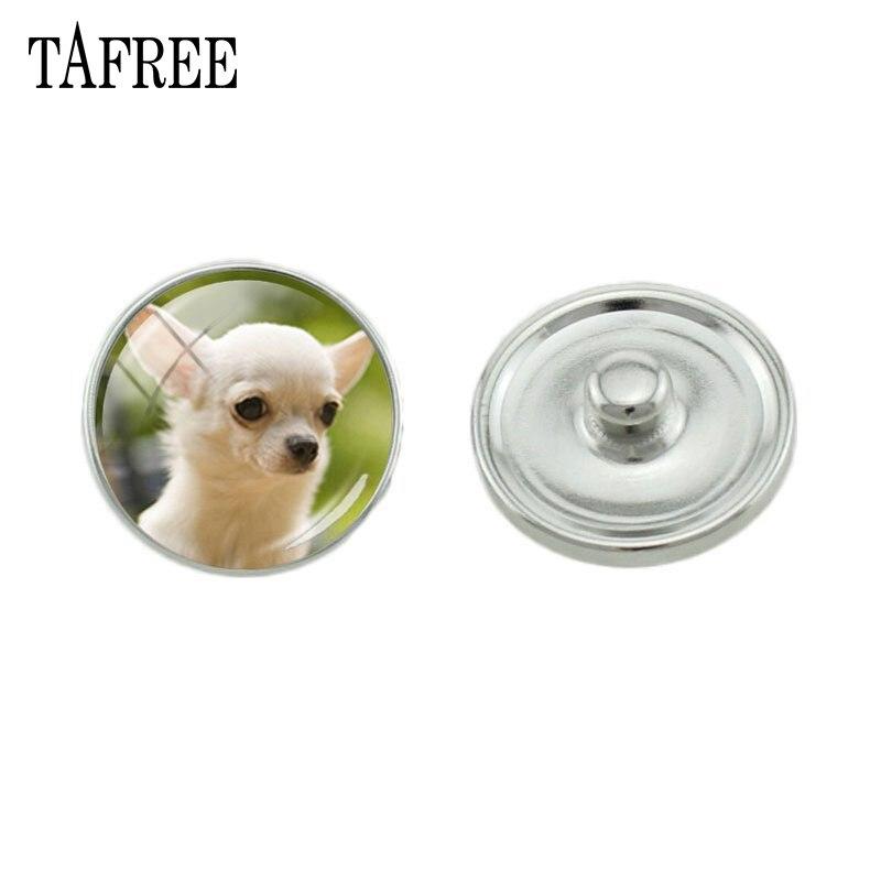 TAFREE Moda cão Bonito Photo Glass Cabochon Botão de Pressão de Metal DIY Jóias Finding Para Colar Pulseira Anéis 5 pçs/lote N968