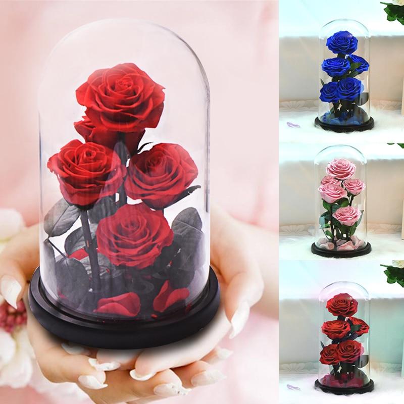 الأبدية المحفوظة روز في الزجاج قبة 5 زهرة رؤساء روز للأبد الحب الزفاف صالح عيد الحب عيد الأم هدايا للنساء