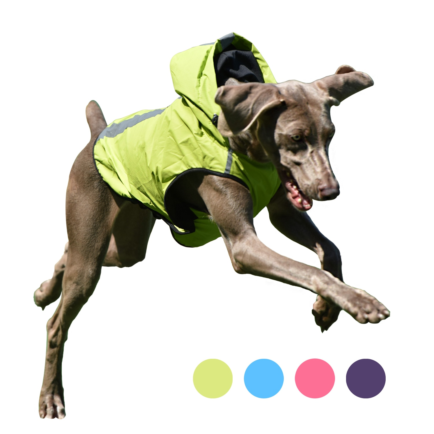 Chaleco reflectante impermeable Para perro mascota, chaqueta impermeable Para Perros pequeños, medianos...