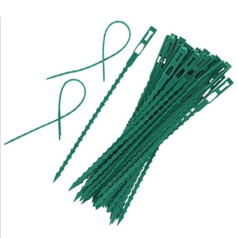 50 Uds., 13,5 cm, 17cm, bridas de plástico para plantas, jardinera, herramientas de banda reutilizables, herramientas de cultivo para invernadero, soporte para escalada de árboles