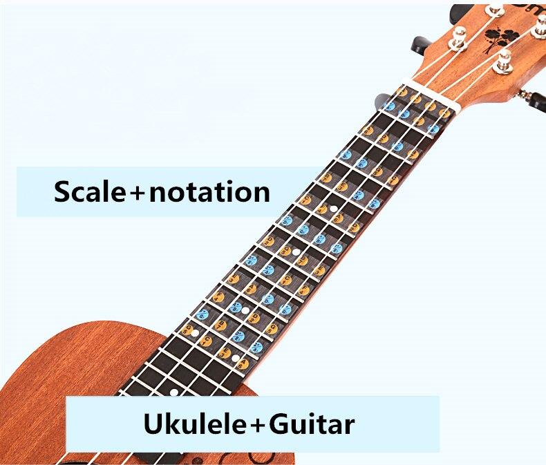 Guitarra diapasón de Ukelele calcomanía de nota Escala de diapasón notación Ukelele repuestos para Guitarra principiante aprender más rápido la teoría de la música