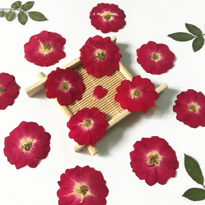 120pcs Pressed Dried Rose Flower Herbarium For Epoxy Resin Jewelry Making Bookmark Phone Case Face Makeup Nail Art DIY