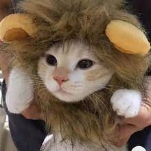 Lion Mane For Cat Pet Cat Decor Accessories Lion Wig Costume Cats Accessories Cute Funny Small And M