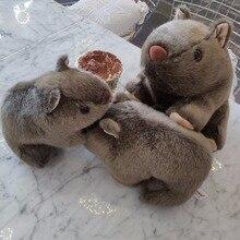Kawaii 시뮬레이션 마우스 기니 돼지 cavia porcellus 귀여운 어린이 인형 봉제 인형 장난감