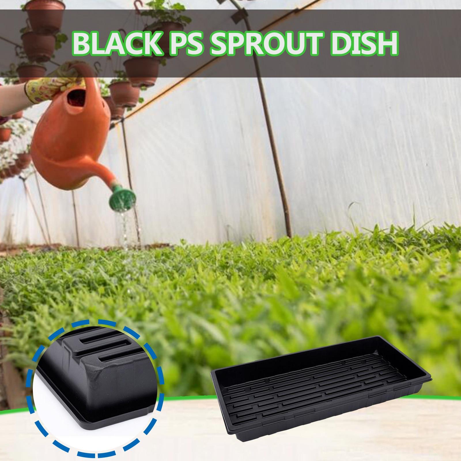 Nursery Pots Rectangular Vegetable Seedling Tray For Leaf Inserting And Soaking Pot Balcony Bonsai Bowl Basin Planter Imitation