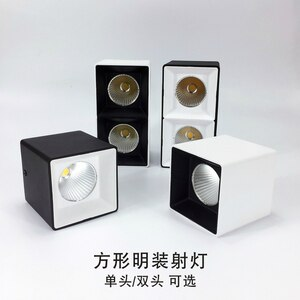 COB square modern lighting clear downlights Living room  corridor lights double-headed light fixtures for celling