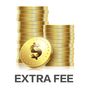 New Special Payment Link For Extra Shipping Cost or Additional Pay on The Order Standard or Ordinary Shipping
