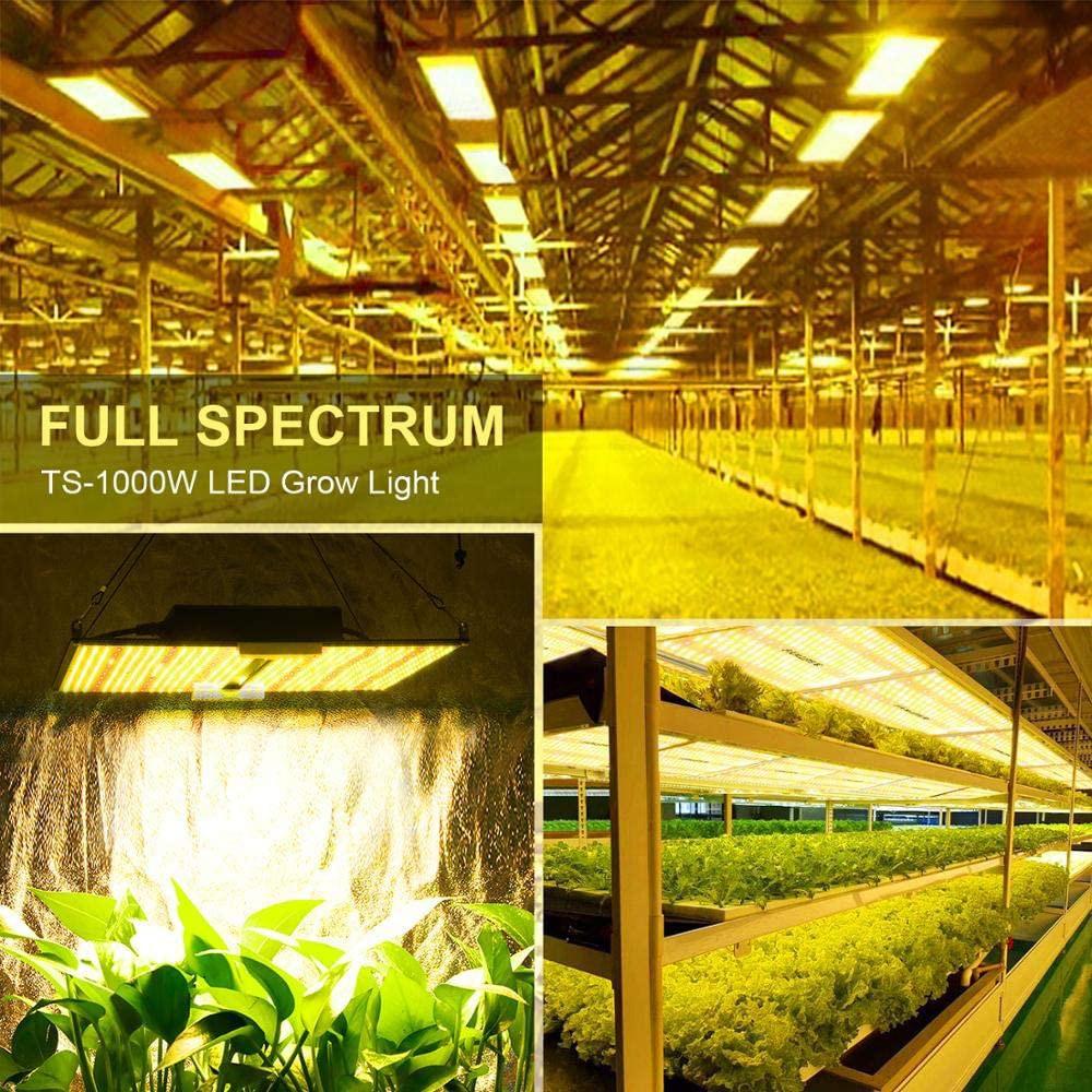 Samsung LM281B Full Spectrum LED Grow Light 600W SF6000 Quantum Board Phytolamp for Plants Veg Flower enlarge