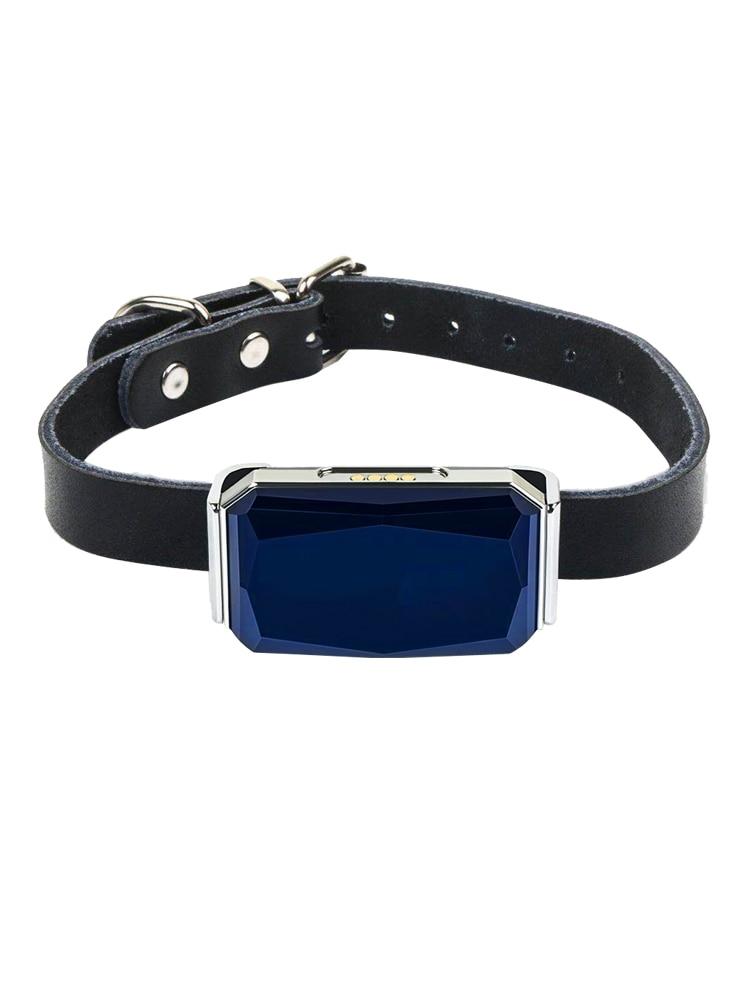 Ошейник для домашних животных, водонепроницаемый IP67 GPS-трекер для домашних животных, кошек, крупного рогатого скота, Wi-Fi, LBS