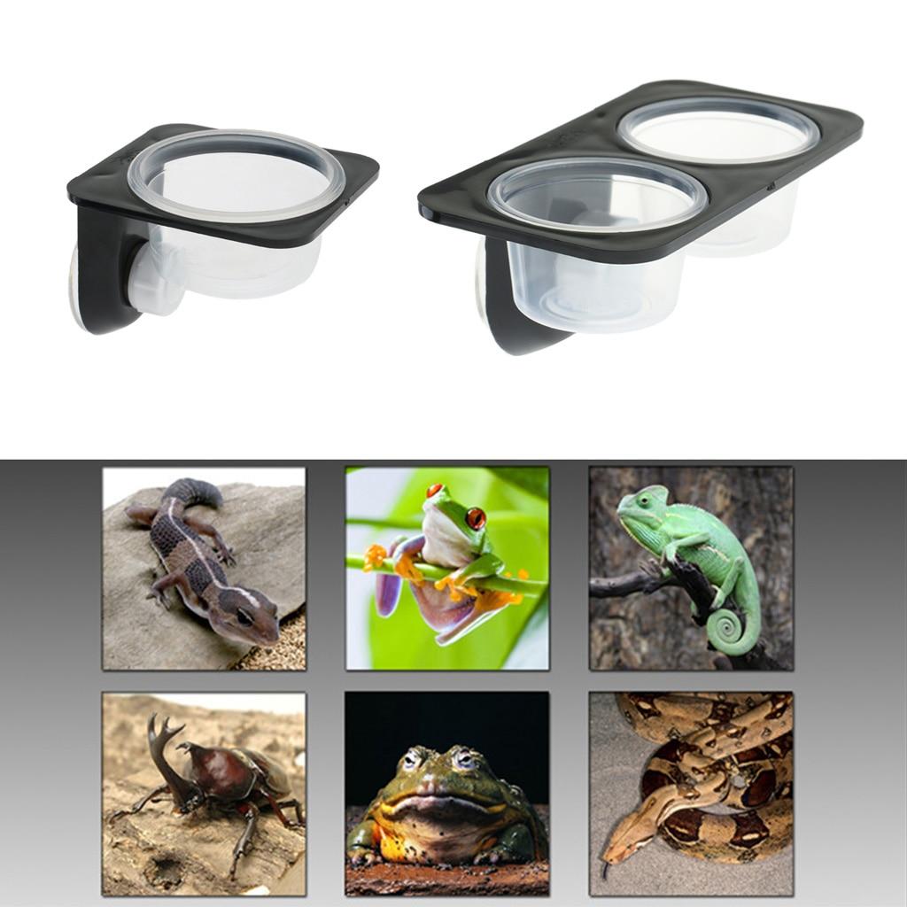 AliExpress - Reptile Lizard Gecko Food Water Bowls Anti-escape Dish Terrarium Pot for Small Reptiles