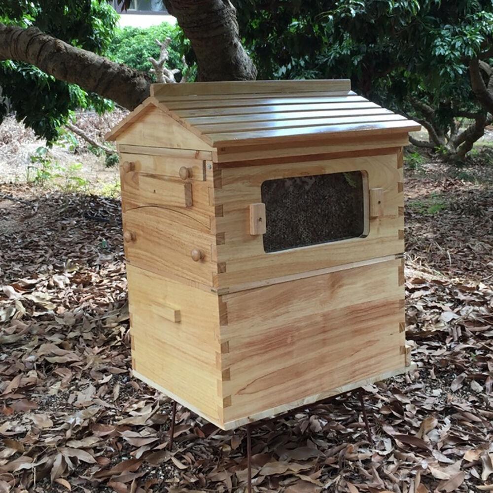 7 قطعة/التلقائي العسل خلية النحل منزل خلية إطارات خشب الأرز تربية الحضنة منزل مربع العسل جمع ل تربية النحل أدوات