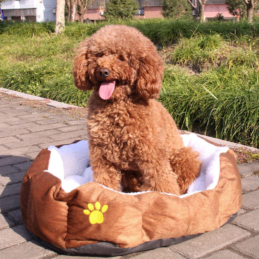 Cama de Gato de cordero suave 40x50cm gato casa invierno Wam perro cojín nido perrera mascota saco de dormir alfombra para cachorros pequeños perros gatos