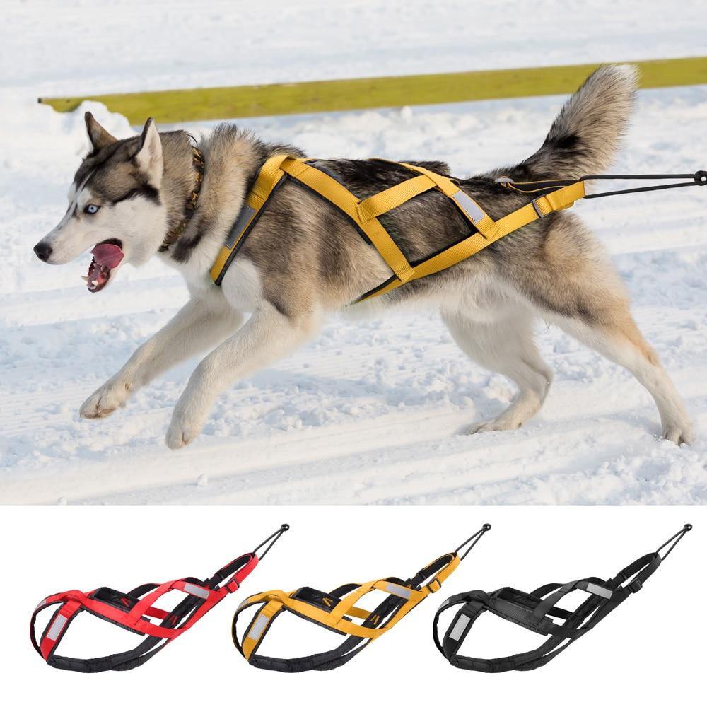 Arnés de trineo para perros grandes, accesorio para tirar del peso de...