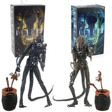 23 centimetri 2 Stili Aliens 1986 Blu Grigio Alien Uovo Facehuggers Chestburster Action Figure Da Collezione Modello Giocattolo Regalo Di Natale