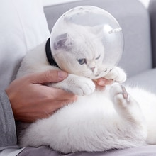 Cat Space Hood Cat Muzzle Anti Bite Breathable Muzzles For Bitting Bath Beauty Travel Tool Grooming