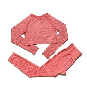 Women 2pcs Seamless Yoga Set Sport Suit Gymwear Workout Clothes Long Sleeve Gym Crop Top High Waist Leggings Fitness Sports Wear